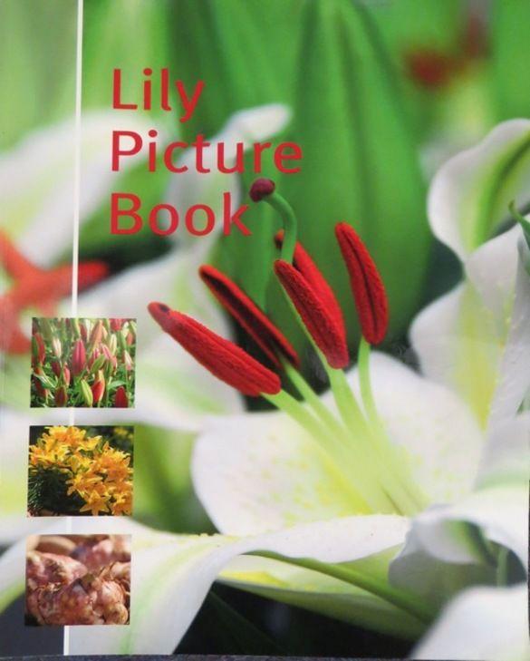 Lilien Buch