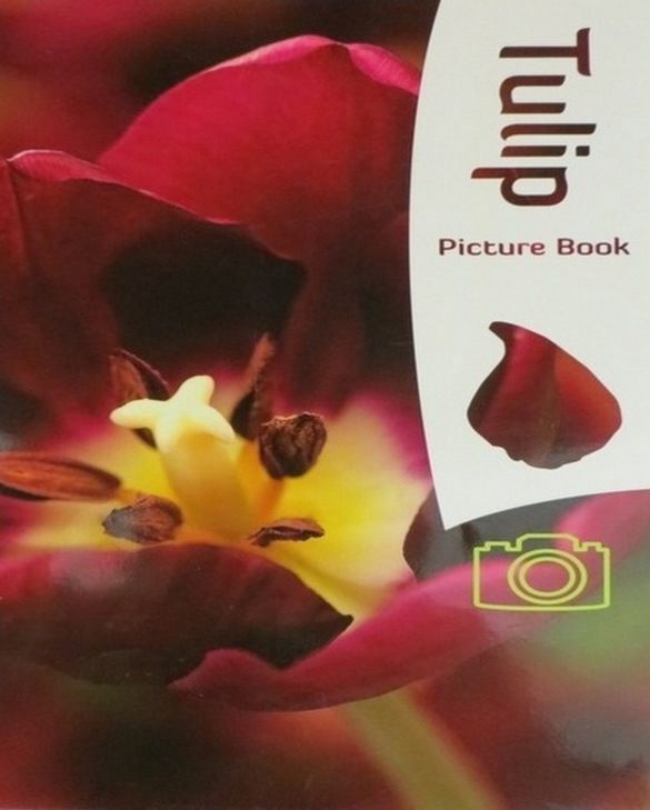 Livre de Tulipes