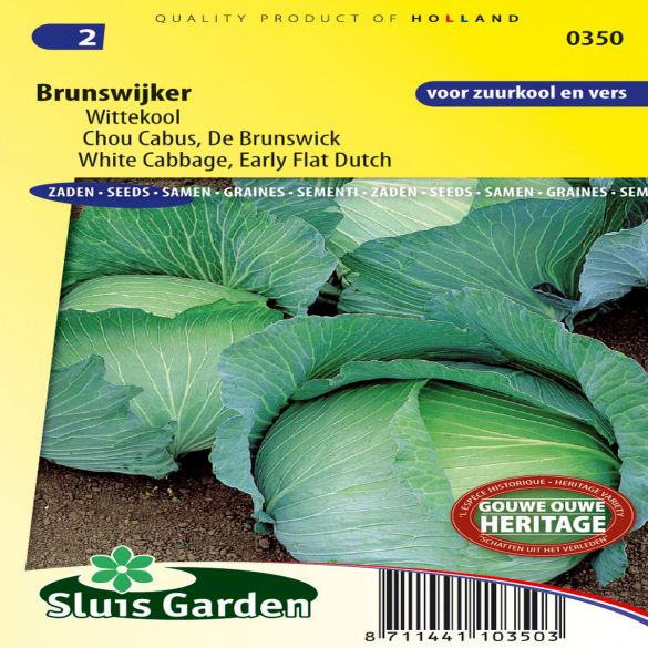 White Cabbage Early Flat Dutch