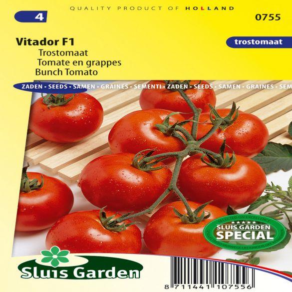 Tomato (Trusses) Vitador F1