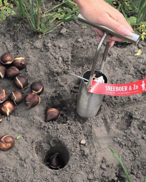 Scheeboer bulb planter